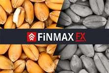 Отзывы о брокере FinmaxFX – отделяем зерна от плевел