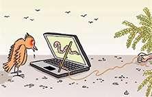 Interactive Trade. Лохотрон или нормальный проект? Мутная схема?