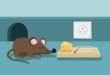 Обзор мошеннической компании AAAFx. Отзывы и стоит ли доверять?