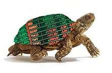 """Торговые идеи на форекс, и что такое стратегия """"Черепах""""?"""
