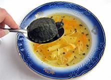 Особенности популярной стратегии и её изучение - Черепаший суп +1.