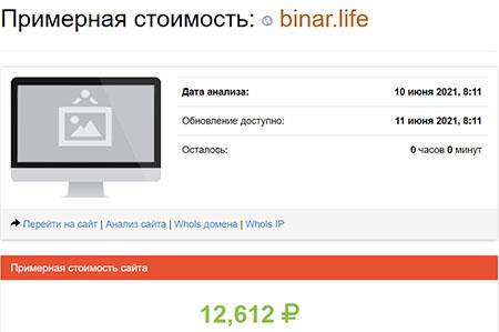 Чем является Binar Life - стоит ди доверять или опасно для денег? Отзывы.