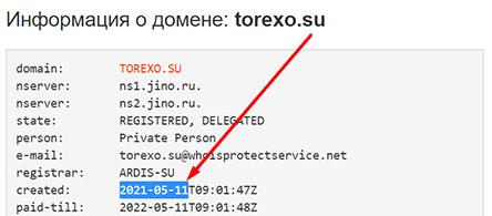 Обзор криптовалютного проекта Torexo. Опасно сотрудничать? Отзывы.